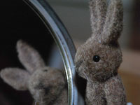 rabbit_mirror